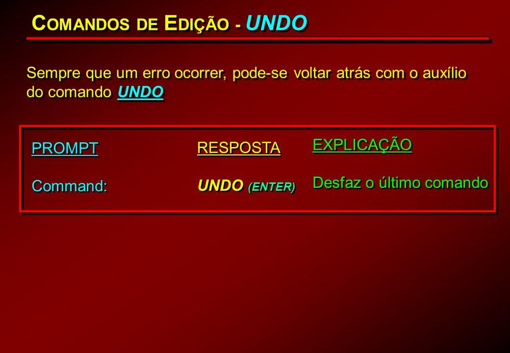 COMANDOS DE EDIÇÃO - UNDO