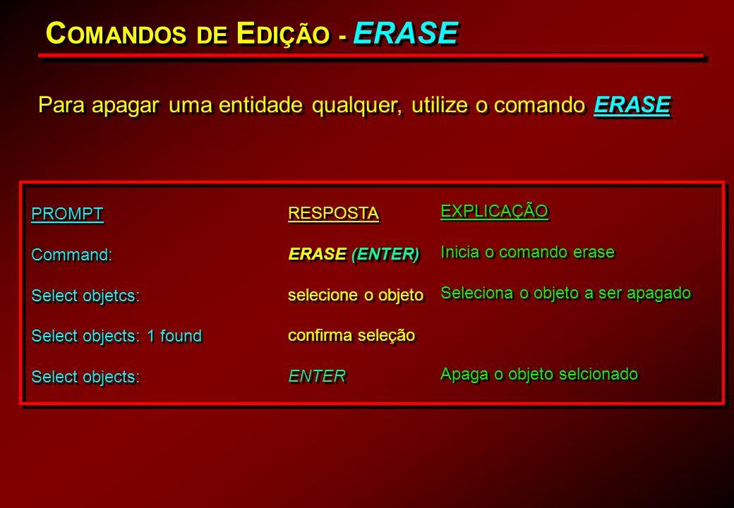 COMANDOS DE EDIÇÃO - ERASE