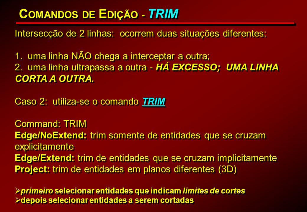 COMANDOS DE EDIÇÃO - TRIM
