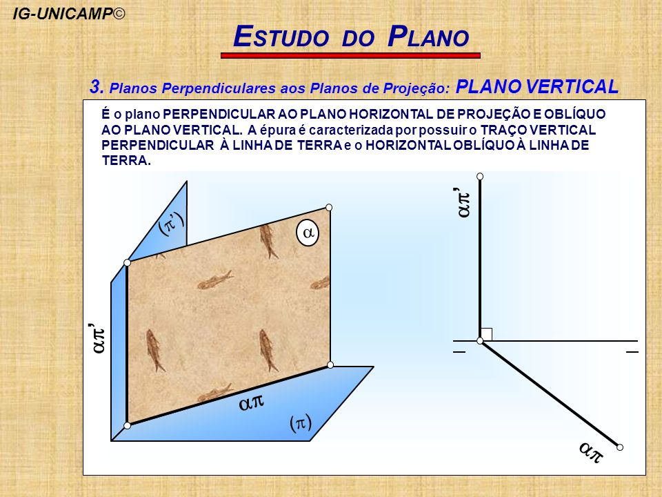 ESTUDO DO PLANO(p) (p') ap. ap' a.