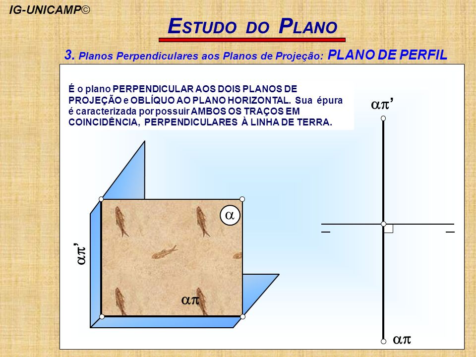 ESTUDO DO PLANO ap' a. ap.