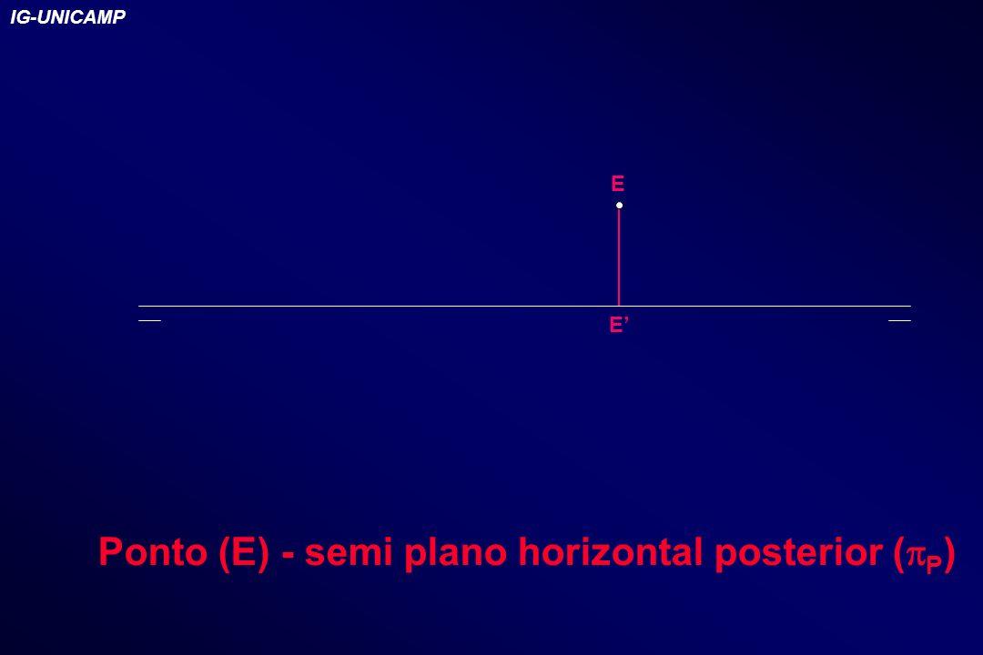 Ponto (E) - semi plano horizontal posterior (pP)