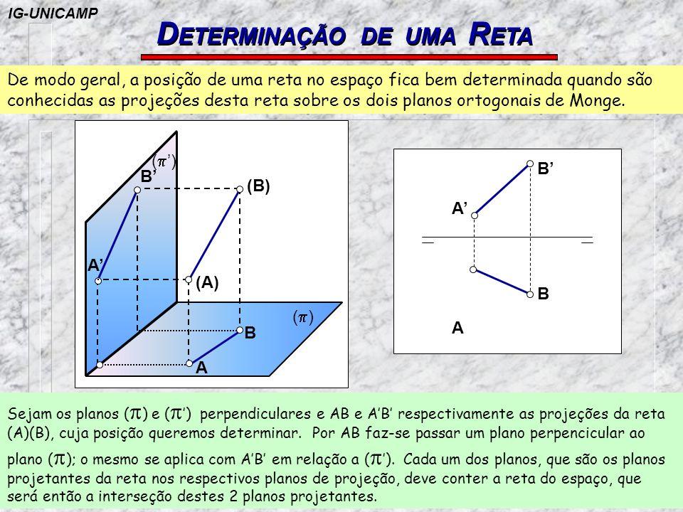 DETERMINAÇÃO DE UMA RETA