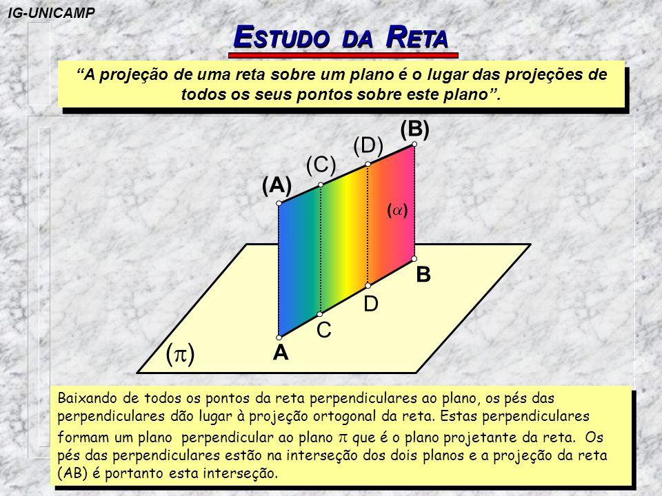 ESTUDO DA RETA (p) (B) (D) (C) (A) B D C A