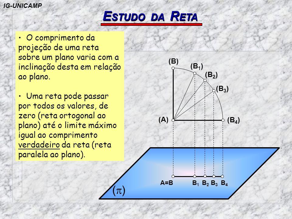 IG-UNICAMP ESTUDO DA RETA. O comprimento da projeção de uma reta sobre um plano varia com a inclinação desta em relação ao plano.