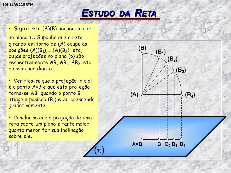 ESTUDO DA RETA (p) (B) (B1) (B2) (B3) (A) (B4) IG-UNICAMP