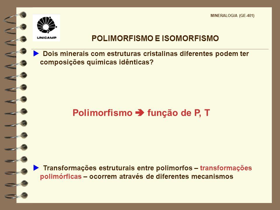 POLIMORFISMO E ISOMORFISMO Polimorfismo  função de P, T