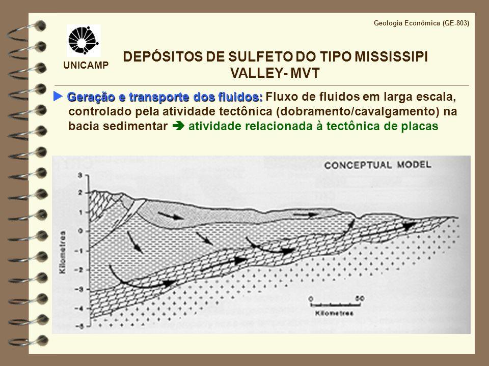 DEPÓSITOS DE SULFETO DO TIPO MISSISSIPI VALLEY- MVT