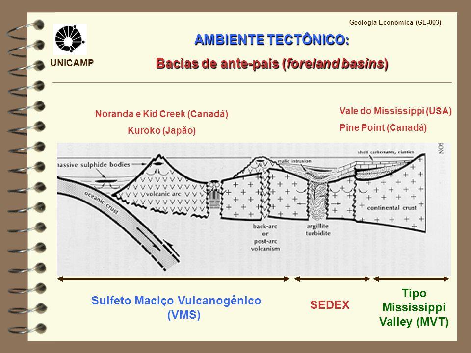 AMBIENTE TECTÔNICO: Bacias de ante-país (foreland basins)