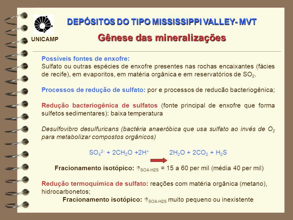 DEPÓSITOS DO TIPO MISSISSIPPI VALLEY- MVT Gênese das mineralizações