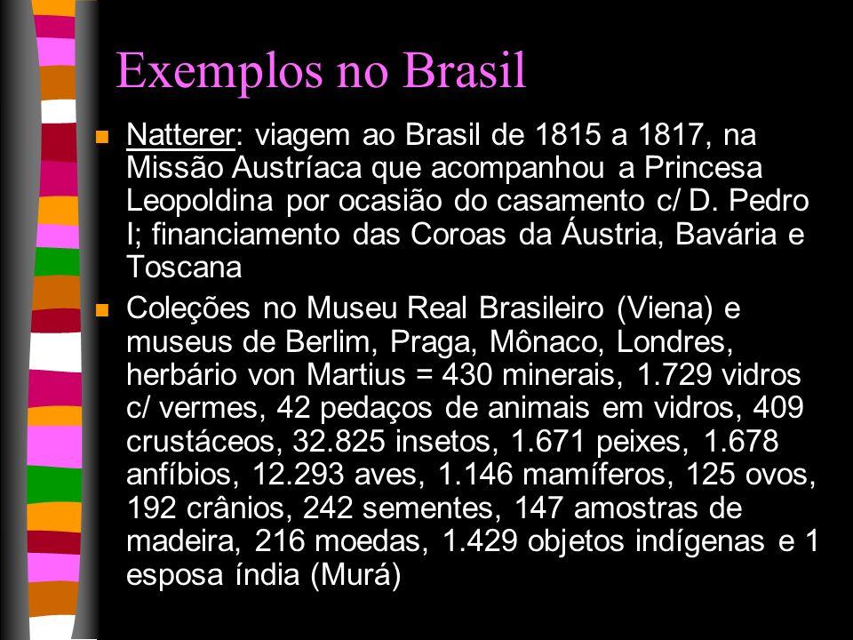 Exemplos no Brasil