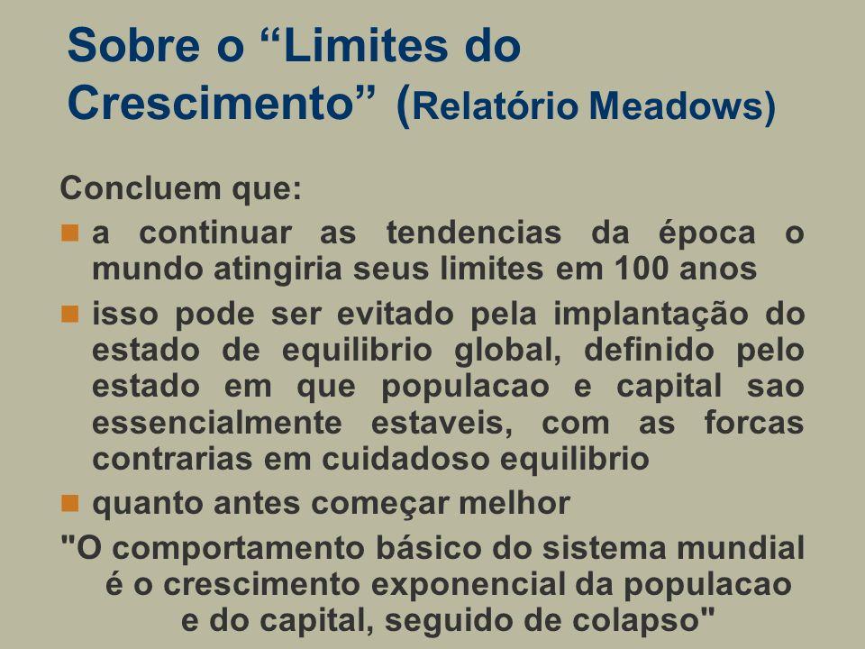 Sobre o Limites do Crescimento (Relatório Meadows)