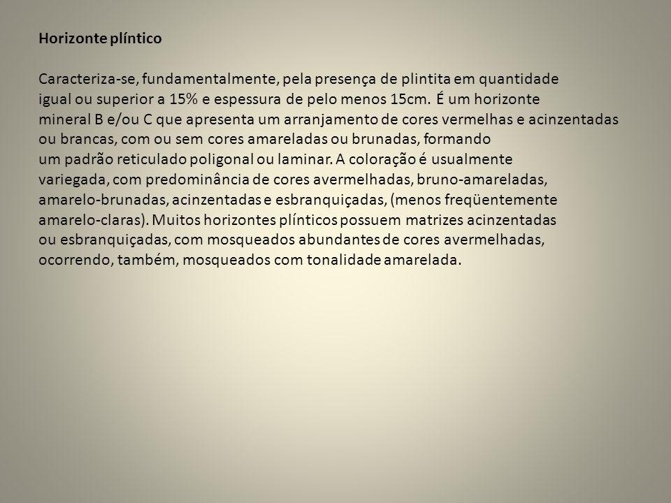 Horizonte plínticoCaracteriza-se, fundamentalmente, pela presença de plintita em quantidade.