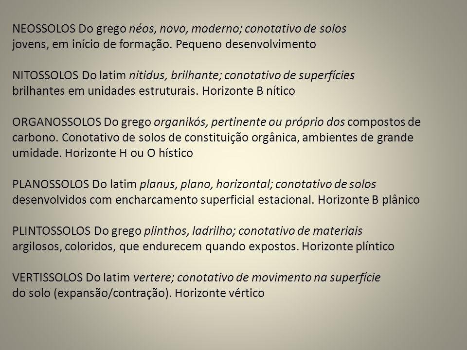 NEOSSOLOS Do grego néos, novo, moderno; conotativo de solos
