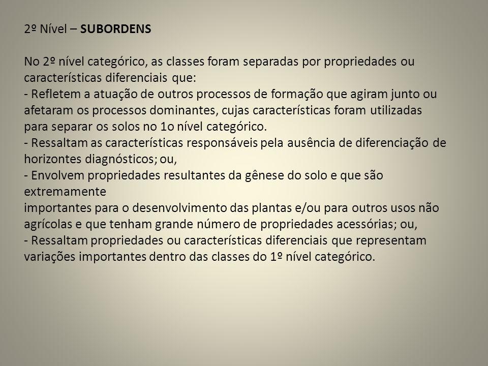 2º Nível – SUBORDENSNo 2º nível categórico, as classes foram separadas por propriedades ou. características diferenciais que: