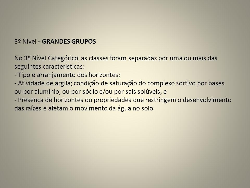 3º Nível - GRANDES GRUPOS