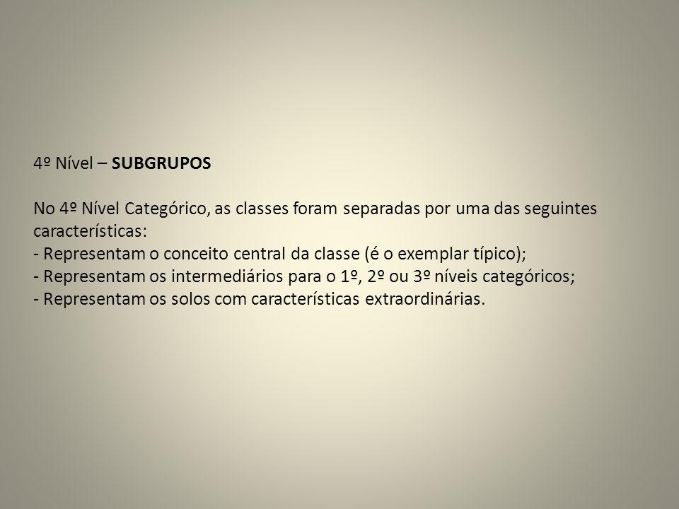 4º Nível – SUBGRUPOS No 4º Nível Categórico, as classes foram separadas por uma das seguintes. características: