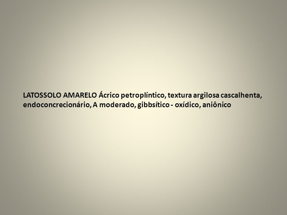 LATOSSOLO AMARELO Ácrico petroplíntico, textura argilosa cascalhenta,