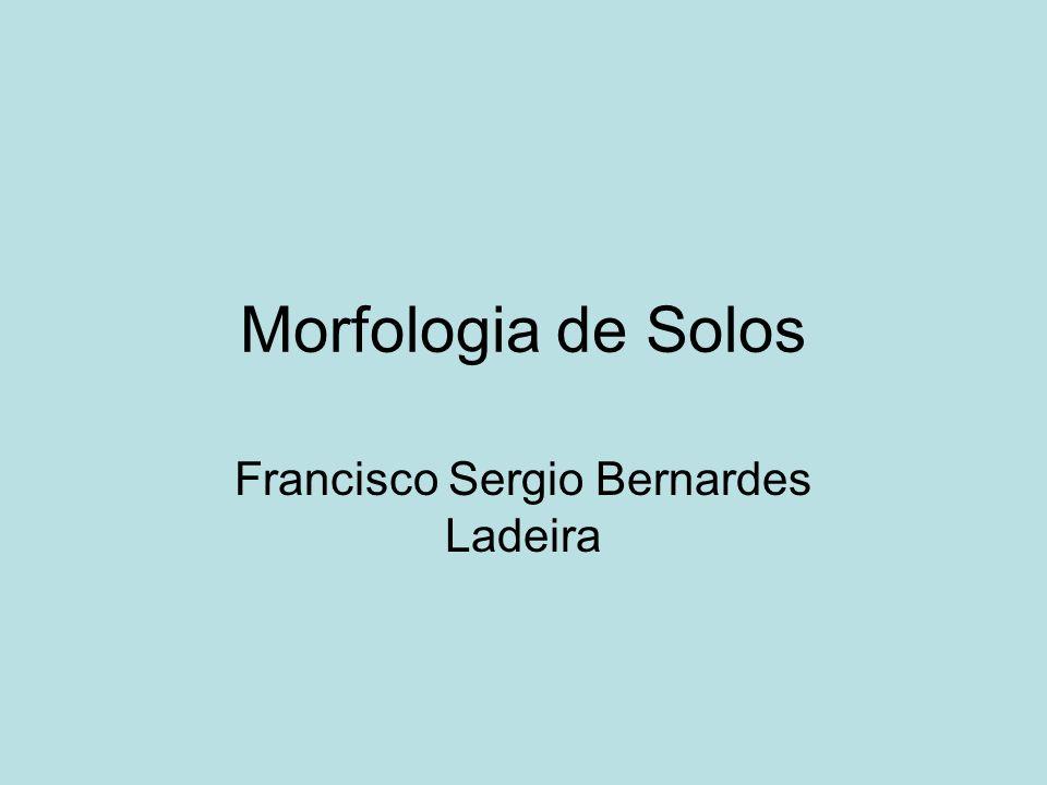 Francisco Sergio Bernardes Ladeira