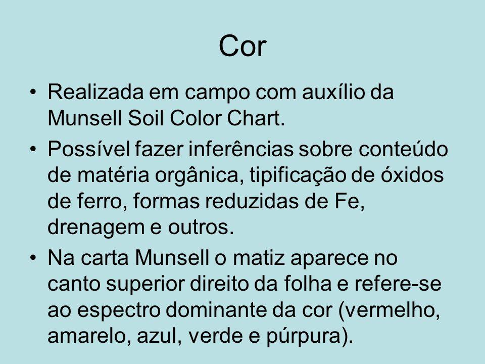 Cor Realizada em campo com auxílio da Munsell Soil Color Chart.
