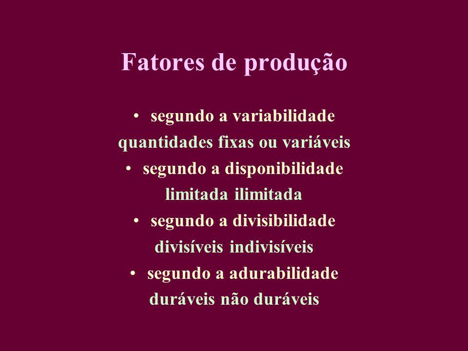 Fatores de produção segundo a variabilidade