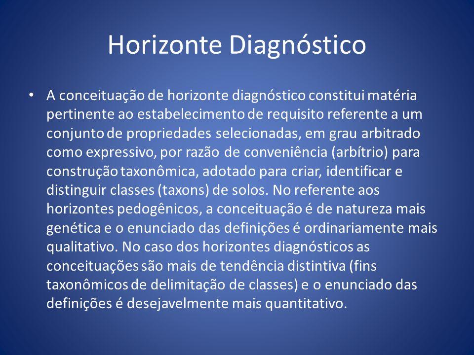 Horizonte Diagnóstico