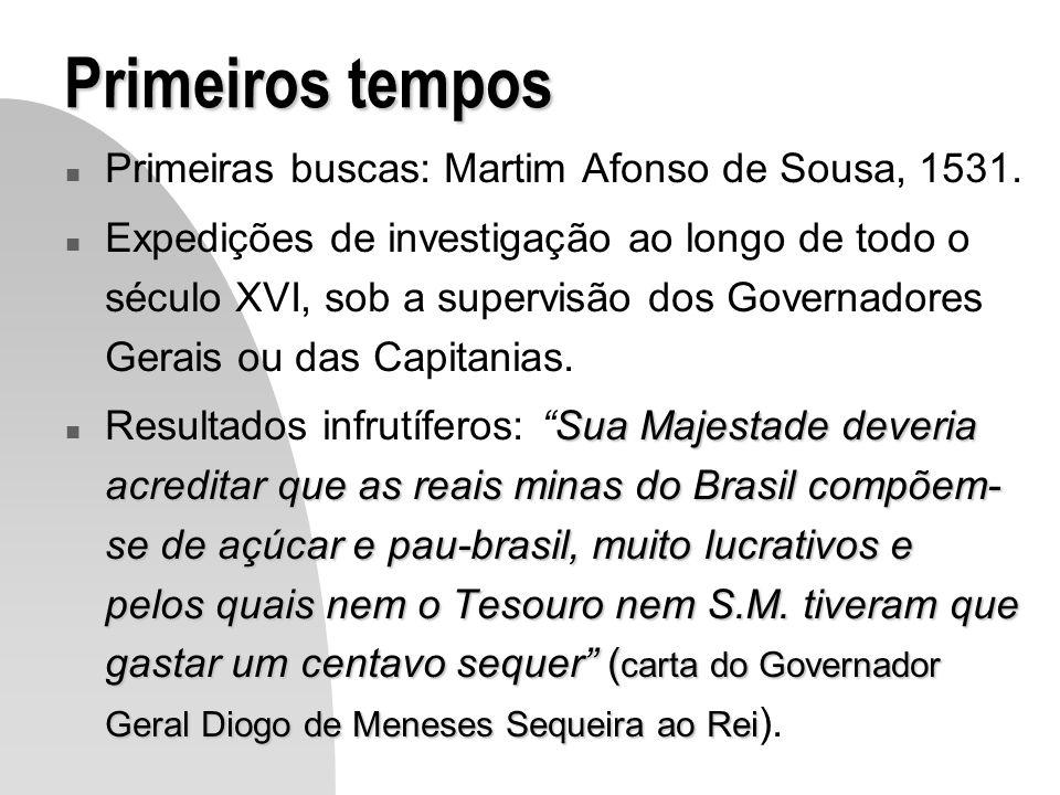 Primeiros tempos Primeiras buscas: Martim Afonso de Sousa, 1531.