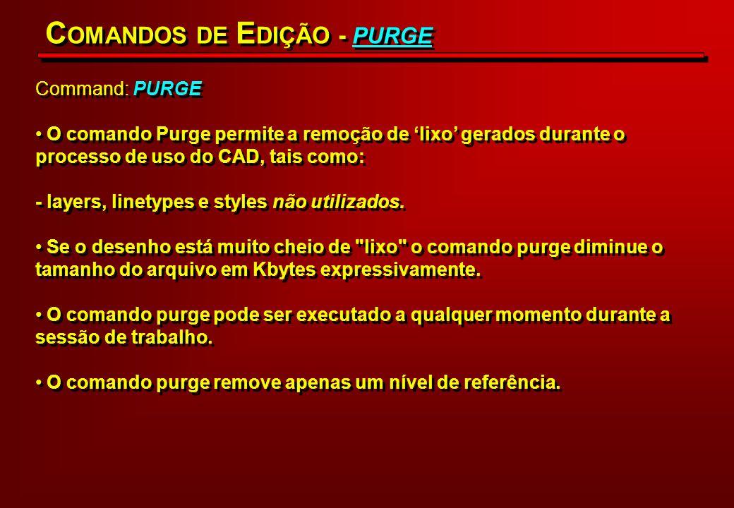 COMANDOS DE EDIÇÃO - PURGE