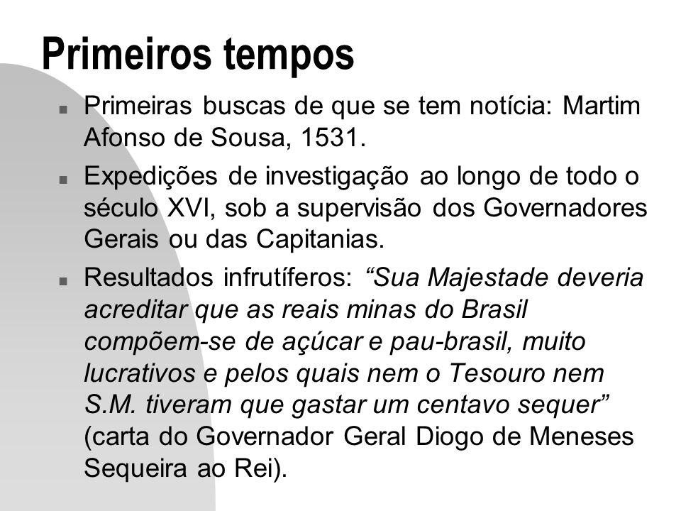 Primeiros tempos Primeiras buscas de que se tem notícia: Martim Afonso de Sousa, 1531.