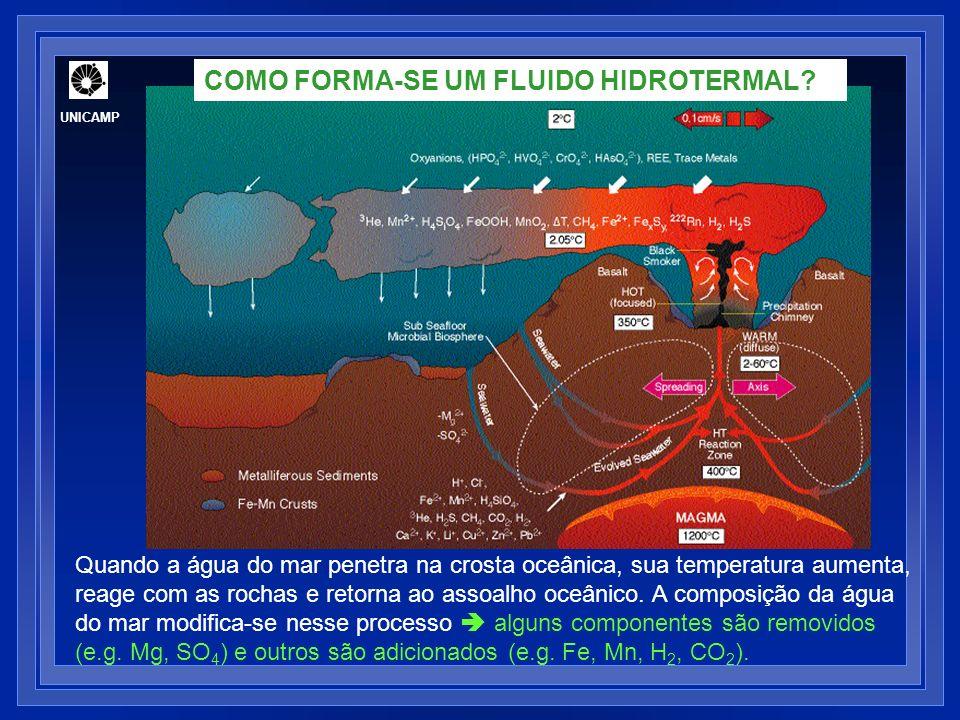 COMO FORMA-SE UM FLUIDO HIDROTERMAL
