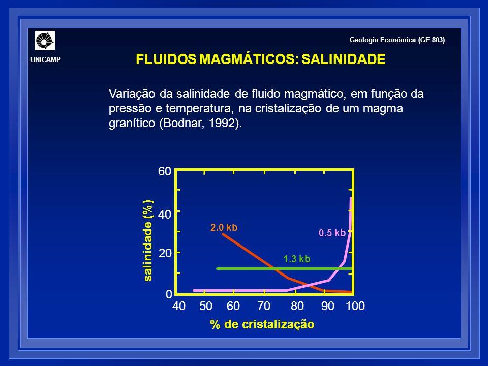 FLUIDOS MAGMÁTICOS: SALINIDADE