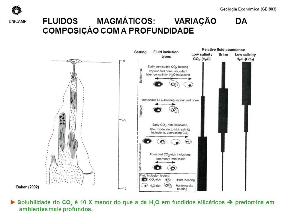 FLUIDOS MAGMÁTICOS: VARIAÇÃO DA COMPOSIÇÃO COM A PROFUNDIDADE