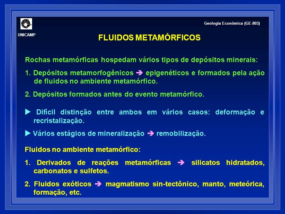 UNICAMP Geologia Econômica (GE-803) FLUIDOS METAMÓRFICOS. Rochas metamórficas hospedam vários tipos de depósitos minerais: