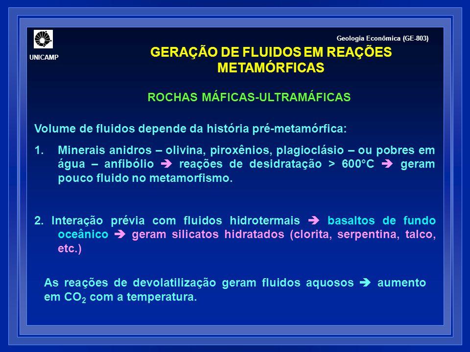GERAÇÃO DE FLUIDOS EM REAÇÕES METAMÓRFICAS