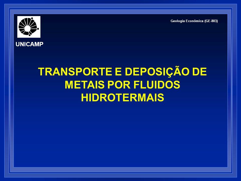 TRANSPORTE E DEPOSIÇÃO DE METAIS POR FLUIDOS HIDROTERMAIS