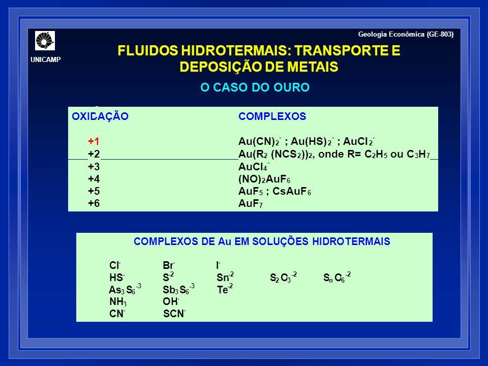 FLUIDOS HIDROTERMAIS: TRANSPORTE E DEPOSIÇÃO DE METAIS