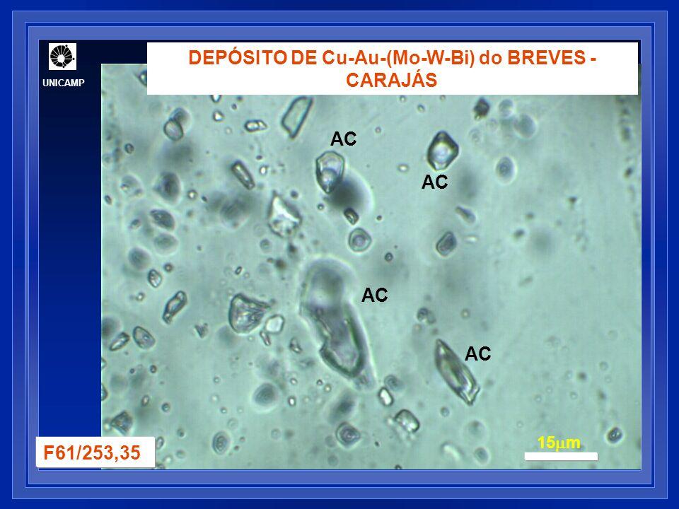 DEPÓSITO DE Cu-Au-(Mo-W-Bi) do BREVES - CARAJÁS