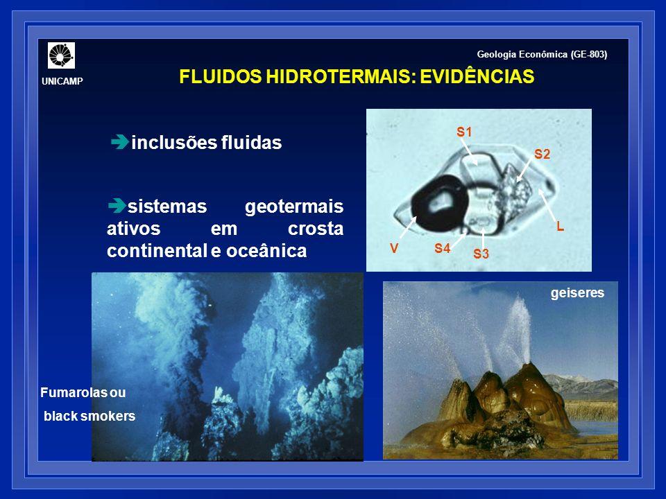 FLUIDOS HIDROTERMAIS: EVIDÊNCIAS