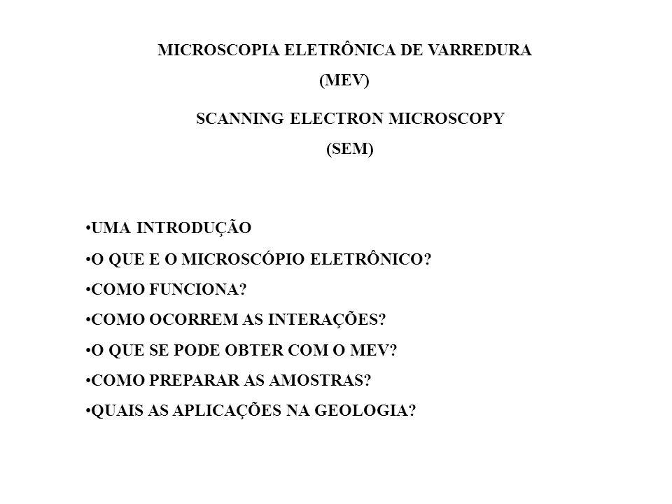 MICROSCOPIA ELETRÔNICA DE VARREDURA SCANNING ELECTRON MICROSCOPY