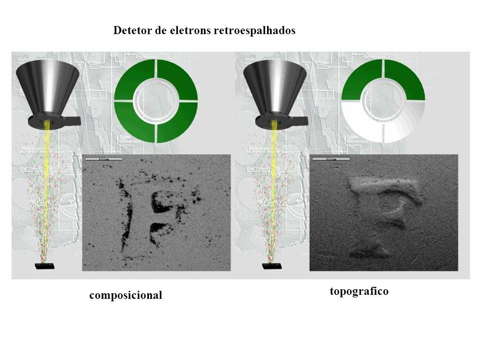 Detetor de eletrons retroespalhados
