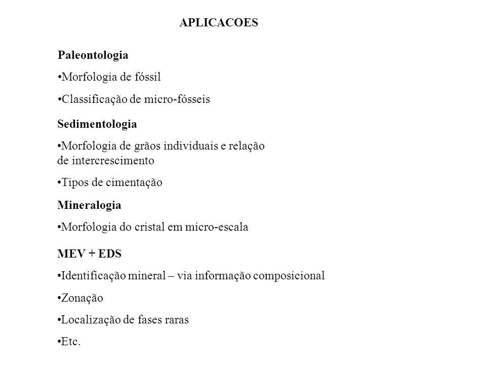 APLICACOES Paleontologia. Morfologia de fóssil. Classificação de micro-fósseis. Sedimentologia.