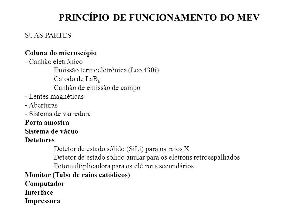 PRINCÍPIO DE FUNCIONAMENTO DO MEV