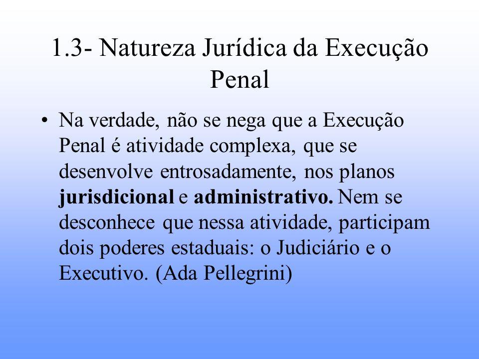 1.3- Natureza Jurídica da Execução Penal