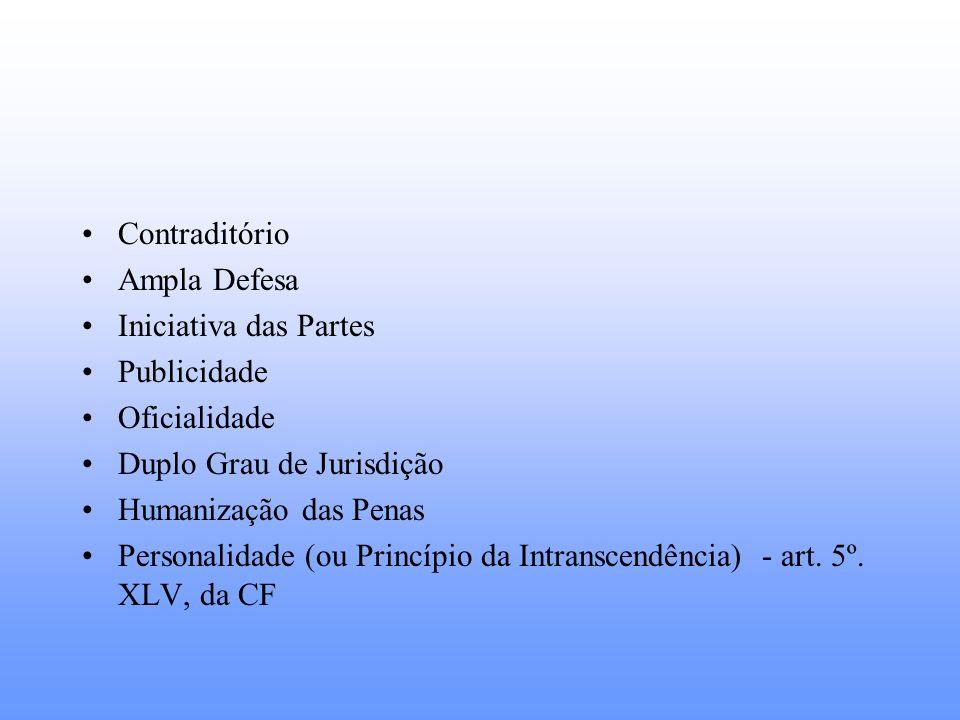 Contraditório Ampla Defesa. Iniciativa das Partes. Publicidade. Oficialidade. Duplo Grau de Jurisdição.