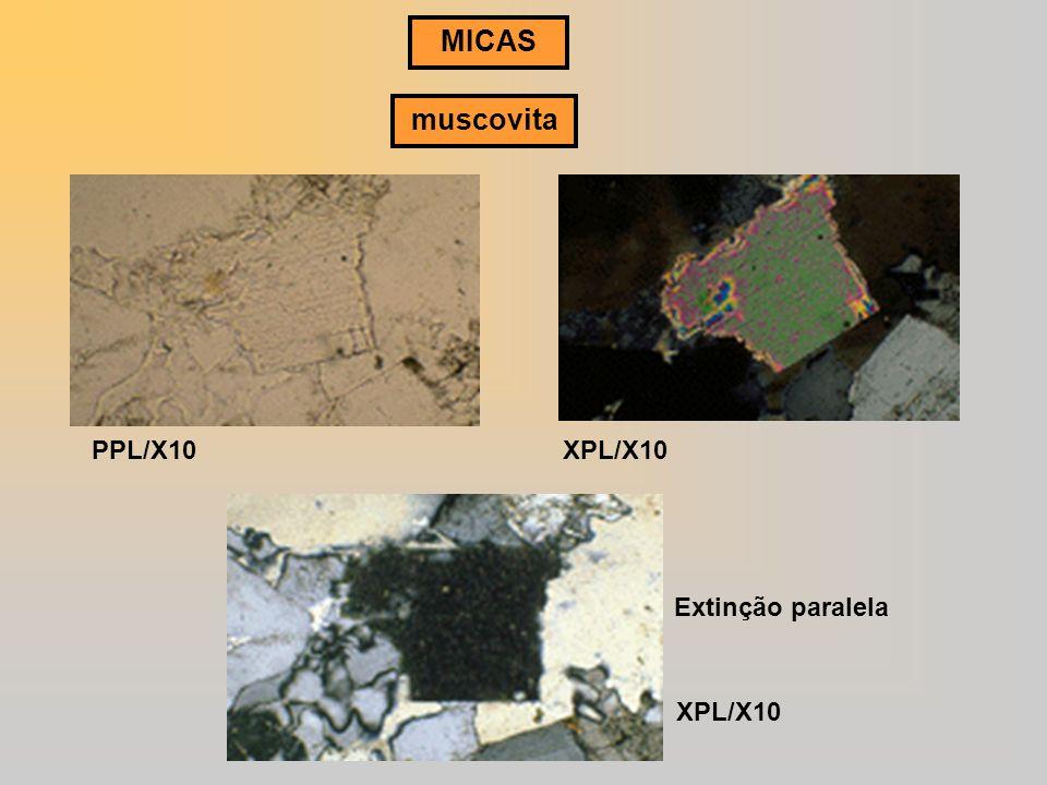MICAS muscovita PPL/X10 XPL/X10 Extinção paralela XPL/X10