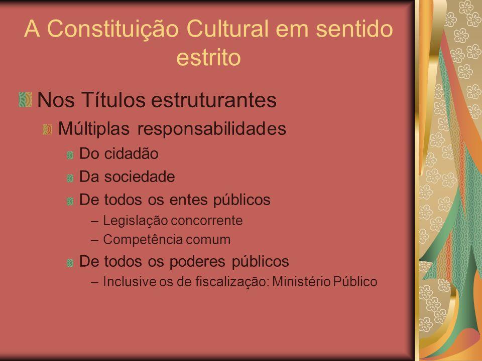A Constituição Cultural em sentido estrito