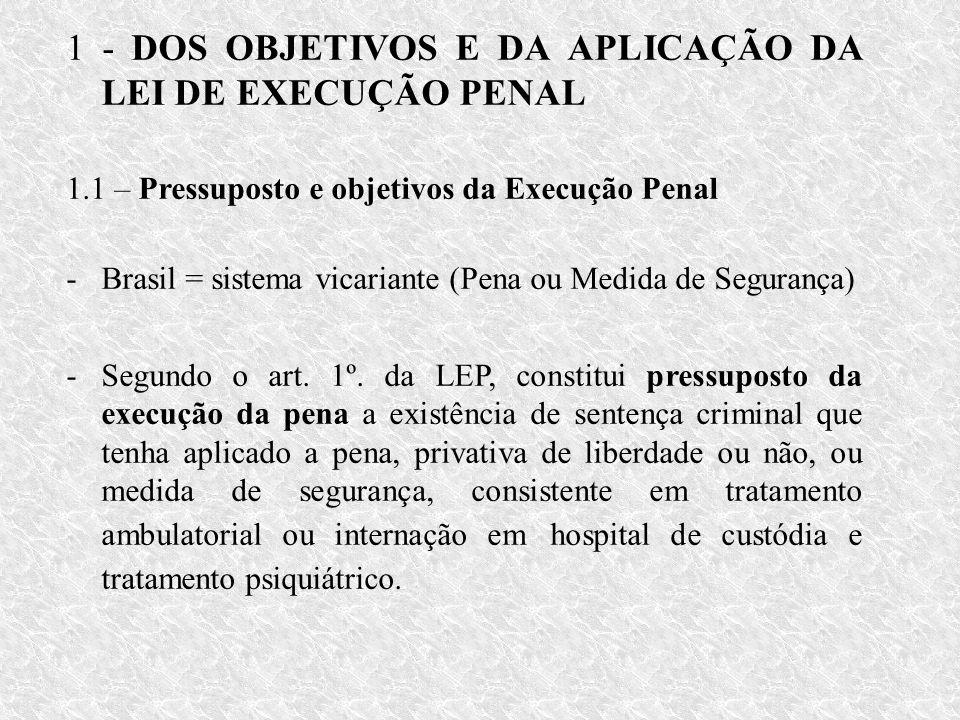 1 - DOS OBJETIVOS E DA APLICAÇÃO DA LEI DE EXECUÇÃO PENAL