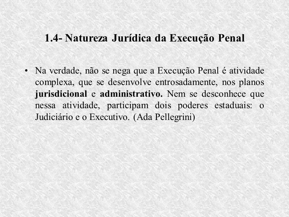 1.4- Natureza Jurídica da Execução Penal