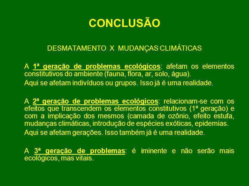 DESMATAMENTO X MUDANÇAS CLIMÁTICAS