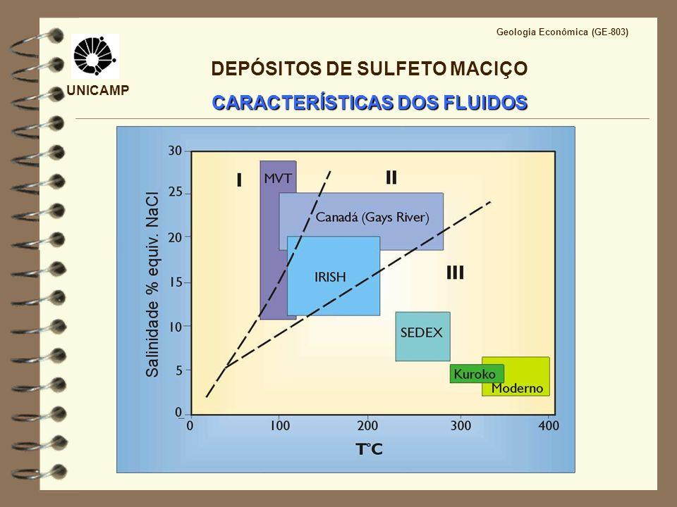 DEPÓSITOS DE SULFETO MACIÇO CARACTERÍSTICAS DOS FLUIDOS